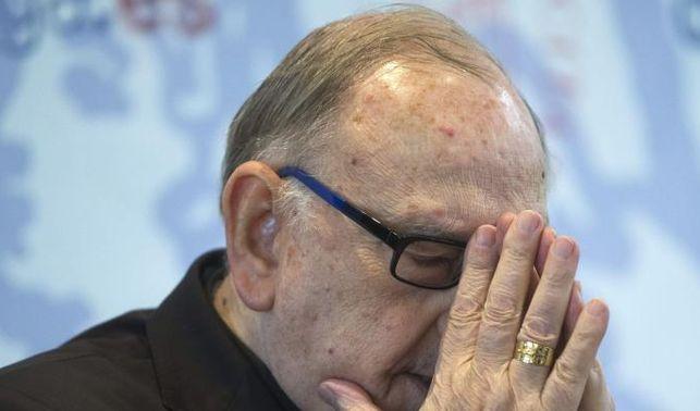 cardenal-espanol-avisa-traicionara-Iglesia_EDIIMA20140113_0485_14