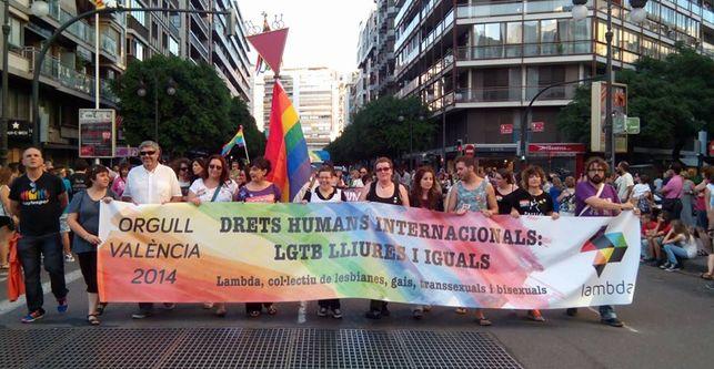 Valencia-reivindicar-derechos-colectivo-LGTB_EDIIMA20140629_0197_13