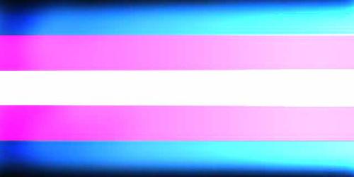 bandera+trans