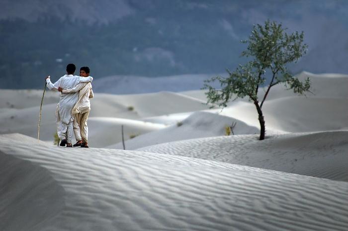 desert-friends