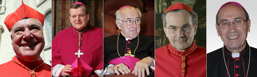 los-opositores-al-papa-francisco