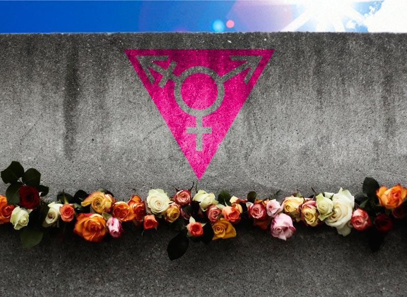 29563_dia-internacional-de-la-memoria-transexual