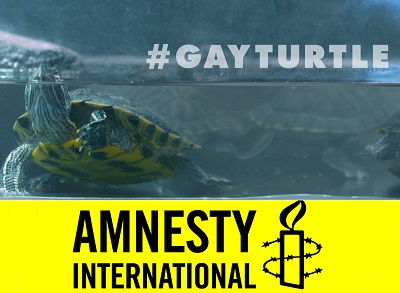 33848_gay-turtle-amnistia-internacional