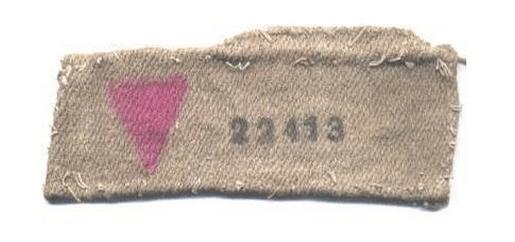 780x580-noticias-simbolo-homosexual-en-los-campos-de-concentracion-nazis