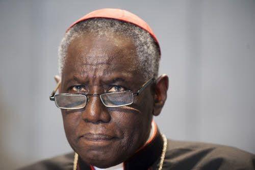 Le-cardinal-Robert-Sarah-nouveau-prefet-Congregation-pour-culte-divin_0_730_333