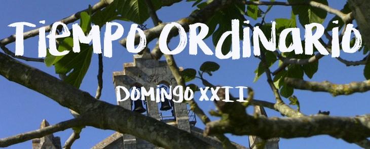TO-D-XXII