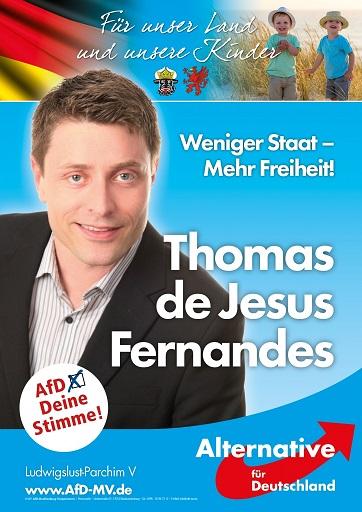AfD-Thomas-Fernandes-724x1024