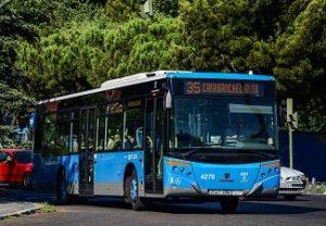 transexual_bus_madrid