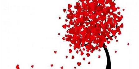el-amor-es-el-arbol-amar-es-el-fruto_560x280
