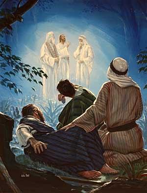 transfiguracion011
