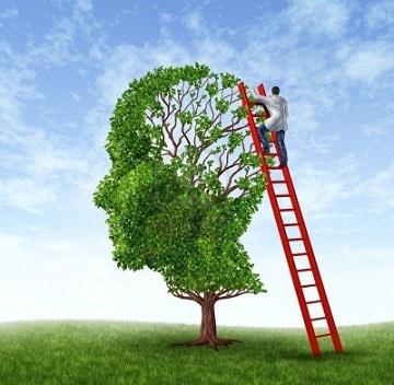 1_mente-albero