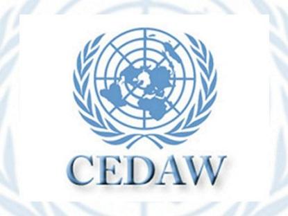 cedaw-768x576