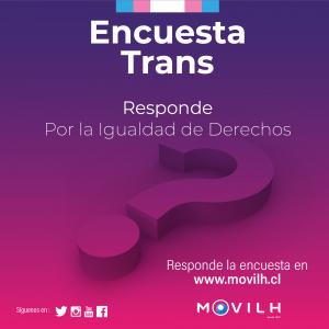 encuesta-trans-instagram-300x300