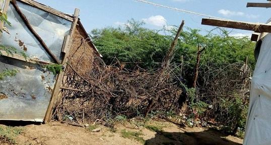 thorn-hedge-for-protection-kakuma-1250965197-1528735019552