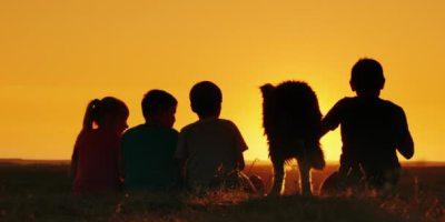 depositphotos_162044388-stock-video-a-group-of-children-admire