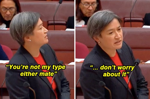 penny-wongs-response-to-a-male-senator-interrupti-2-17432-1498031498-0_dblbig