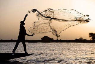 pescador.red_
