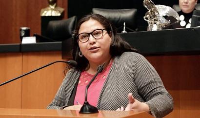 senadora-Citlalli-Hernández-2-1024x604