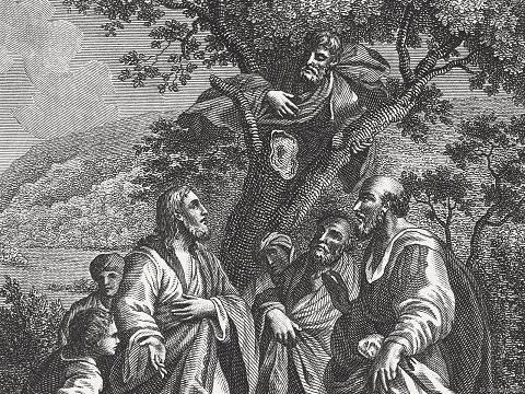 ▷-Una-breve-reflexion-del-encuentro-de-Zaqueo-con-Jesus