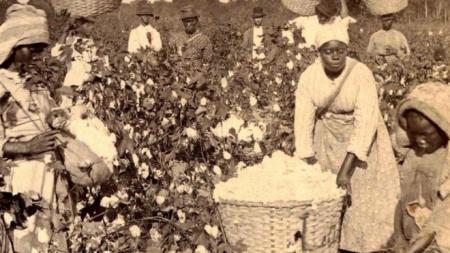 Trabajo-esclavo-algodonales-americanos_2198790131_14278309_660x371