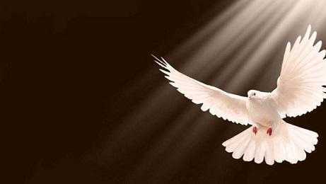 gran-regalo-espiritu-santo-790x350-1280x720