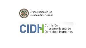 CIDH-300x168