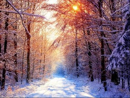 Camino-y-nieve
