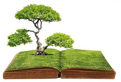 libro-verde