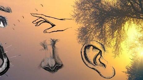 espiritualidad-sentidos-provocacion-inicial_2359274066_15651540_660x371